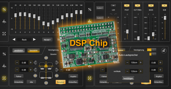 DSP Chip
